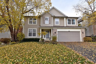 422 Hancock Avenue, South Elgin, IL 60177 - MLS#: 10123981