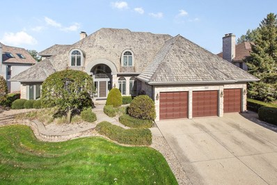 10642 Misty Hill Road, Orland Park, IL 60462 - MLS#: 10124067