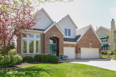11135 Glenbrook Lane, Indian Head Park, IL 60525 - #: 10124140