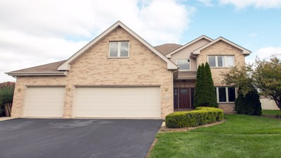 1374 W Colony Drive, Crete, IL 60417 - #: 10124449