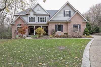 25603 N Warwick Road NORTH EAST, Tower Lakes, IL 60010 - #: 10124511