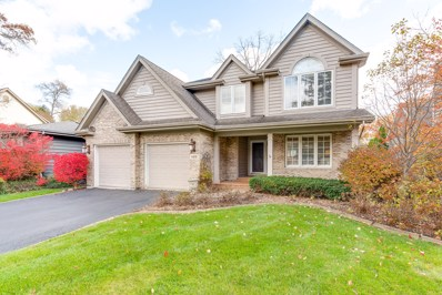 4919 Woodward Avenue, Downers Grove, IL 60515 - #: 10124765