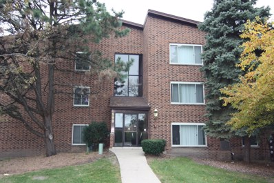 990 Perrie Drive UNIT 303, Elk Grove Village, IL 60007 - #: 10124899