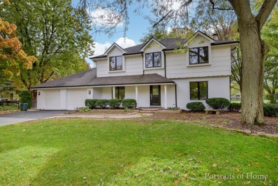 1040 Royal Bombay Court, Naperville, IL 60563 - #: 10125237