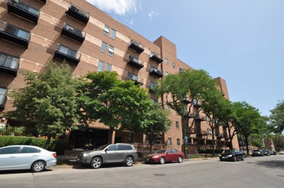 1000 E 53RD Street UNIT 117, Chicago, IL 60615 - #: 10125608