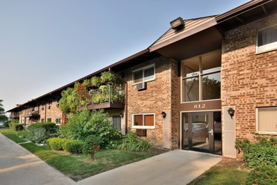 812 E Old Willow Road UNIT 108, Prospect Heights, IL 60070 - #: 10125658