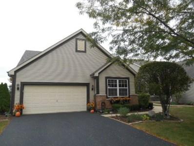 13747 S Tamarack Drive, Plainfield, IL 60544 - MLS#: 10125976