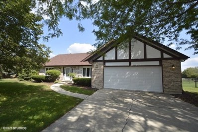 20329 S White Fence Court, Frankfort, IL 60423 - MLS#: 10126122