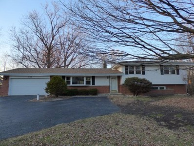 202 Patricia Lane, Prospect Heights, IL 60070 - #: 10126776