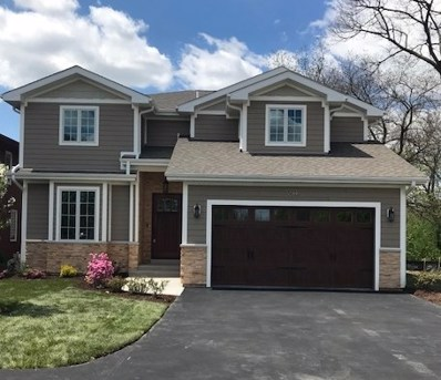 5622 Belmont Road, Downers Grove, IL 60516 - #: 10126873
