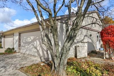 23 Wake Robin Court, Woodridge, IL 60517 - #: 10126913