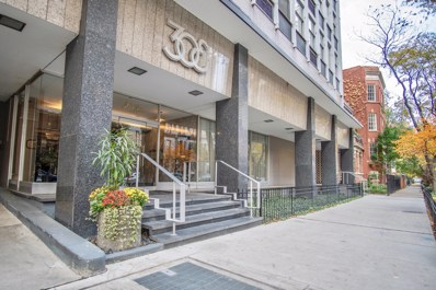 30 E Elm Street UNIT 5E, Chicago, IL 60611 - #: 10126953
