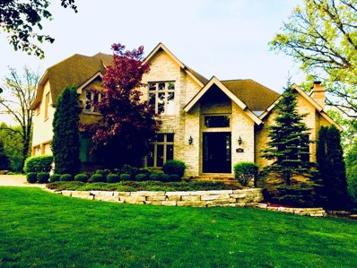302 Old Oak Court, Burr Ridge, IL 60527 - #: 10127181