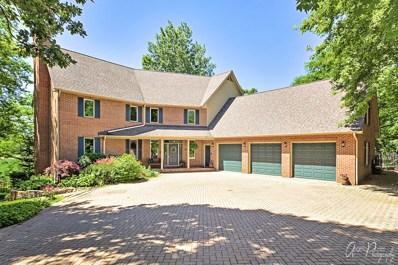 26132 N Greenbriar Court, Lake Barrington, IL 60084 - MLS#: 10127275