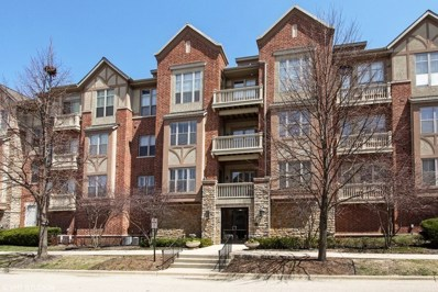 1739 Tudor Lane UNIT 207, Northbrook, IL 60062 - #: 10127343