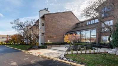 3085 Pheasant Creek Drive UNIT 112, Northbrook, IL 60062 - #: 10127406