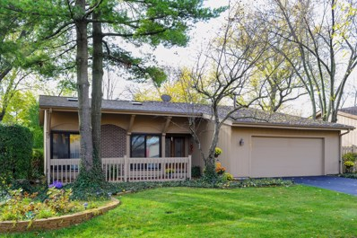 623 Bryce Trail, Roselle, IL 60172 - #: 10127736