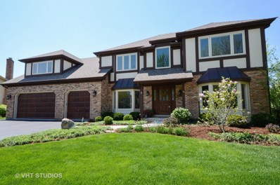 203 Secretariat Court, Wheaton, IL 60189 - #: 10128075