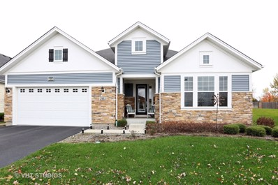 2963 Chevy Chase Lane, Naperville, IL 60564 - #: 10128078