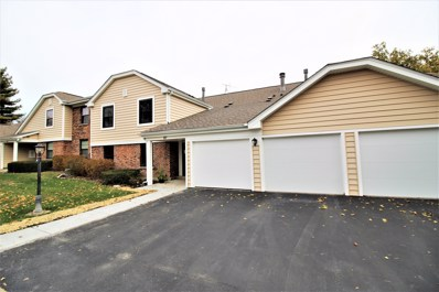 87 Marble Hill Court UNIT C1, Schaumburg, IL 60193 - #: 10128153