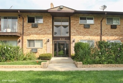 832 E Old Willow Road UNIT 9-107, Prospect Heights, IL 60070 - #: 10128410