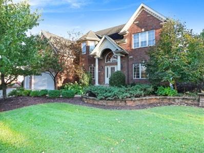 3204 Rollingridge Road, Naperville, IL 60564 - #: 10128475