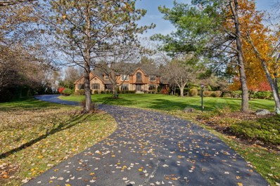6515 High Meadow Court, Long Grove, IL 60047 - #: 10128648