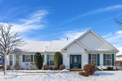 13740 S Hickory Lane, Plainfield, IL 60544 - #: 10128762