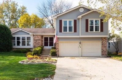 528 Greenhill Lane, Schaumburg, IL 60193 - #: 10128784