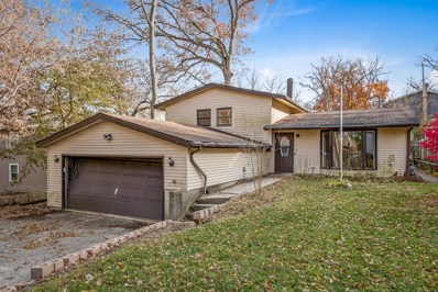 317 Hiawatha Drive, Lake In The Hills, IL 60156 - MLS#: 10129113