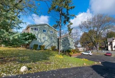 207 Fremont Street UNIT 12, Woodstock, IL 60098 - #: 10129157