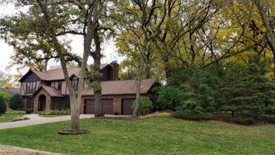 801 Red Stable Way, Oak Brook, IL 60523 - MLS#: 10129617