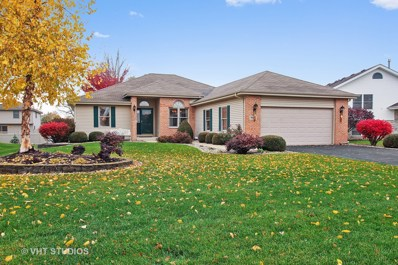 1425 Argyle Lane NORTH, Bourbonnais, IL 60914 - #: 10129861