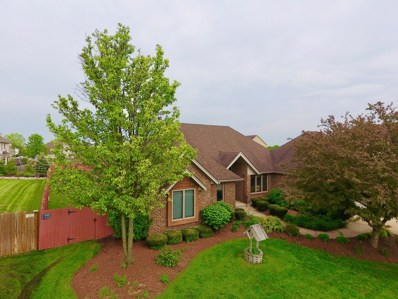 1579 Little Willow Road, Morris, IL 60450 - MLS#: 10130289