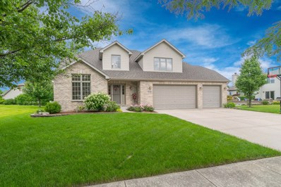 13228 Brooklands Lane, Plainfield, IL 60585 - #: 10130328
