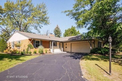 20534 Parthenon Way, Olympia Fields, IL 60461 - #: 10130348