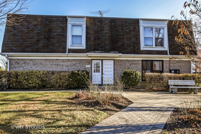 803 Garfield Avenue UNIT B, Libertyville, IL 60048 - #: 10131101