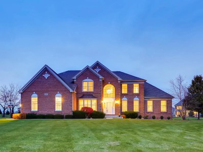 23 Crystal Downs Drive, Hawthorn Woods, IL 60047 - #: 10131120
