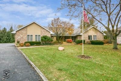 15110 Wood Duck Lane, Homer Glen, IL 60491 - #: 10131838