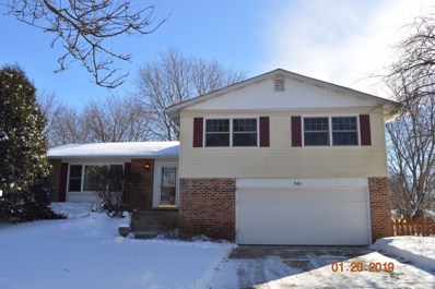 745 Mulberry Court, Algonquin, IL 60102 - #: 10131925