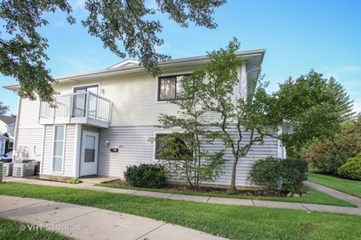 636 Breakers UNIT 636, Schaumburg, IL 60194 - #: 10131986