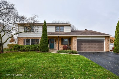 901 Manchester Street, Naperville, IL 60563 - #: 10132006