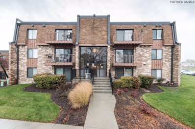 725 Limerick Lane UNIT 2D, Schaumburg, IL 60193 - #: 10132068
