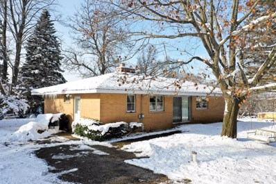 27519 W Chris Larkin Road, Ingleside, IL 60041 - #: 10132234