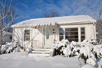18192 W Valley Drive, Grayslake, IL 60030 - MLS#: 10132452