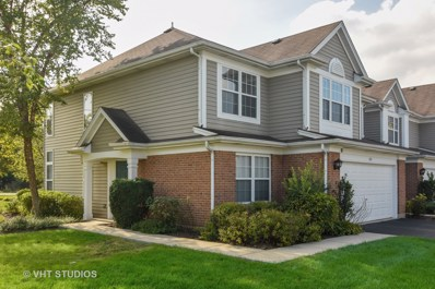 381 S Crown Court, Palatine, IL 60074 - #: 10132519
