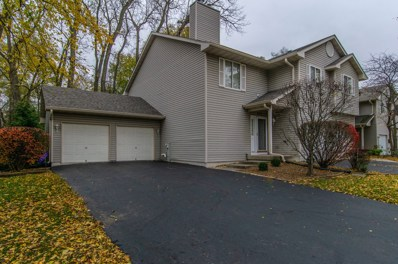 4211 Whitetail Court UNIT 4211, Joliet, IL 60431 - MLS#: 10132560