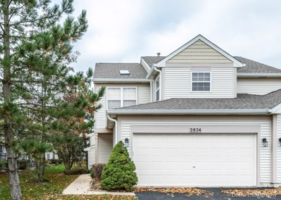 2824 White Thorn Circle, Naperville, IL 60564 - MLS#: 10132722