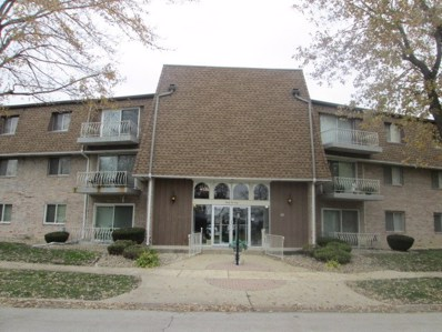 3240 N Manor Drive UNIT 219, Lansing, IL 60438 - MLS#: 10133013