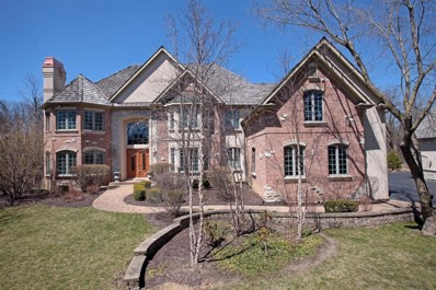 16579 W Cherrywood Lane, Wadsworth, IL 60083 - #: 10133266